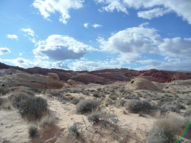 desert-175462_1280