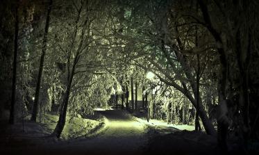 winter-625925_1280